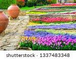 botanical garden in balchik ... | Shutterstock . vector #1337483348