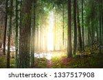winter country landscape. white ... | Shutterstock . vector #1337517908