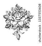 hand drawn bunch with rose... | Shutterstock . vector #1337553608