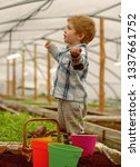 learning ecology. small boy... | Shutterstock . vector #1337661752
