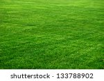 grass background with vignette | Shutterstock . vector #133788902