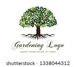 tree logo vector template  logo ... | Shutterstock .eps vector #1338044312