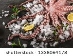 whole fresh raw octopus with... | Shutterstock . vector #1338064178