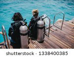 diving lesson in open water.... | Shutterstock . vector #1338400385