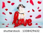 french bulldog with love shape...   Shutterstock . vector #1338429632