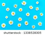 pattern made of chamomiles on... | Shutterstock . vector #1338528305