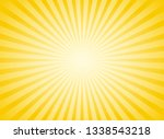 sunlight abstract wide... | Shutterstock .eps vector #1338543218