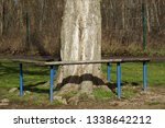 Cosy Bench Around A Tree      ...