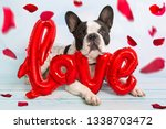 french bulldog with love shape...   Shutterstock . vector #1338703472