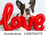 french bulldog with love shape...   Shutterstock . vector #1338703475