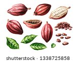 cocoa pods and beans with... | Shutterstock . vector #1338725858