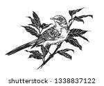 bird on branch. engraving...   Shutterstock . vector #1338837122