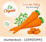 carrots with leaf vector... | Shutterstock .eps vector #1339053992
