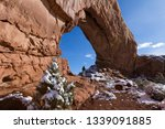 beautiful formation known as... | Shutterstock . vector #1339091885