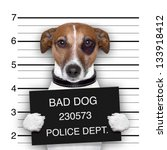 Stock photo mugshot of wanted dog holding a banner 133918412