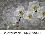 3d wallpaper  orchids flower on ... | Shutterstock . vector #1339695818
