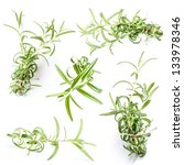 set of fresh green rosemary... | Shutterstock . vector #133978346