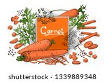 vegetable vector sketch. a set... | Shutterstock .eps vector #1339889348