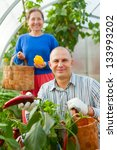 man and woman in vegetable... | Shutterstock . vector #133993202
