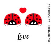 two red lady bug ladybird icon...   Shutterstock .eps vector #1340006972