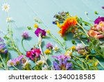 herbal and wildflowers on blue... | Shutterstock . vector #1340018585