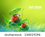 Natural Background From Rainy...