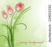 delicate tulip | Shutterstock .eps vector #134022332