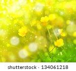 Field Flowers Buttercup. Yellow ...