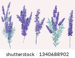 collection of vector vintage... | Shutterstock .eps vector #1340688902