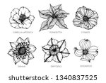 collection set of flower... | Shutterstock .eps vector #1340837525