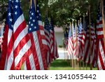 Rows Of American Flags In...