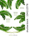 set of backgrounds with palm... | Shutterstock .eps vector #134112578