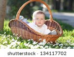 child in a wattled basket... | Shutterstock . vector #134117702