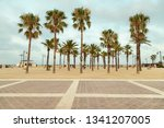 Beautiful Palm trees at seafront promenade - La Malvarrosa beach, Valencia Spain