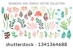 seaweeds and coral reef... | Shutterstock .eps vector #1341364688