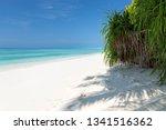 white sandy beach on maldives... | Shutterstock . vector #1341516362