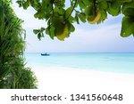 beautiful nature and white... | Shutterstock . vector #1341560648