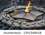 almaty  kazakhstan   february...   Shutterstock . vector #1341568418