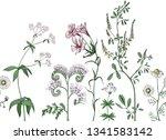 meadow flowers vector pattern | Shutterstock .eps vector #1341583142