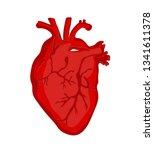 human heart vector illustration | Shutterstock .eps vector #1341611378
