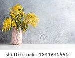 mimosa flowers in vase over... | Shutterstock . vector #1341645995