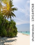 beautiful nature and white... | Shutterstock . vector #1341649268