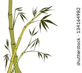 green bamboo stems isolated on... | Shutterstock . vector #134164982
