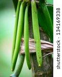 Green Vanilla Fruits With...