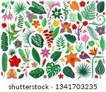 tropical rainforest plants set. ... | Shutterstock .eps vector #1341703235