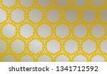 modern stylish texture....   Shutterstock .eps vector #1341712592