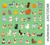 vector illustration set of cute ... | Shutterstock .eps vector #1341725288