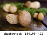 forest mushrooms on the table.... | Shutterstock . vector #1341954422