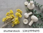 spa products concept  spa... | Shutterstock . vector #1341999695