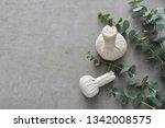 eucalyptus leaves and herbal... | Shutterstock . vector #1342008575